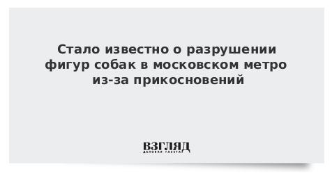 Стало известно о разрушении фигур собак в московском метро из-за прикосновений