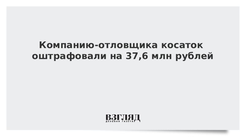 Компанию-отловщика косаток оштрафовали на 37,6 млн рублей