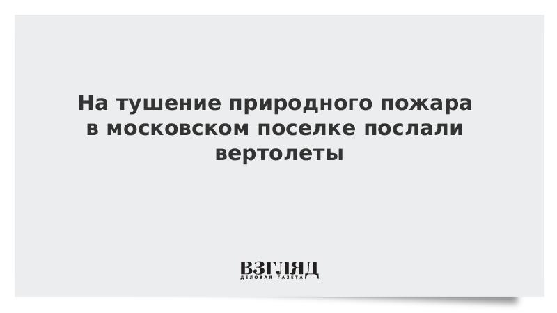 На тушение природного пожара в московском поселке послали вертолеты
