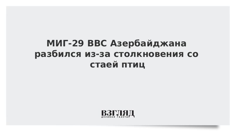 Стая птиц сбила МиГ-29 ВВС Азербайджана