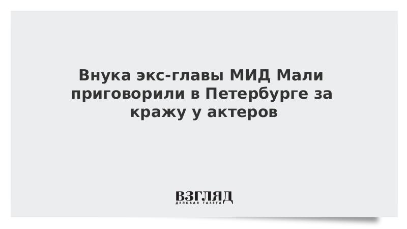 Внука экс-главы МИД Мали приговорили в Петербурге за кражу у актеров