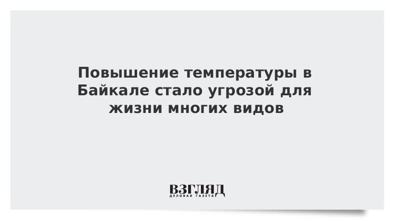 Повышение температуры в Байкале стало угрозой для жизни многих видов